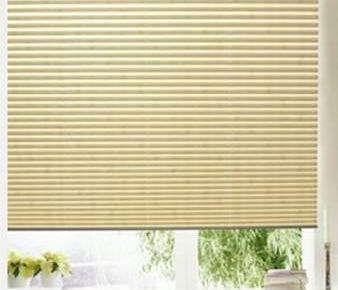 Blinds.com: Premier Pleated Shade