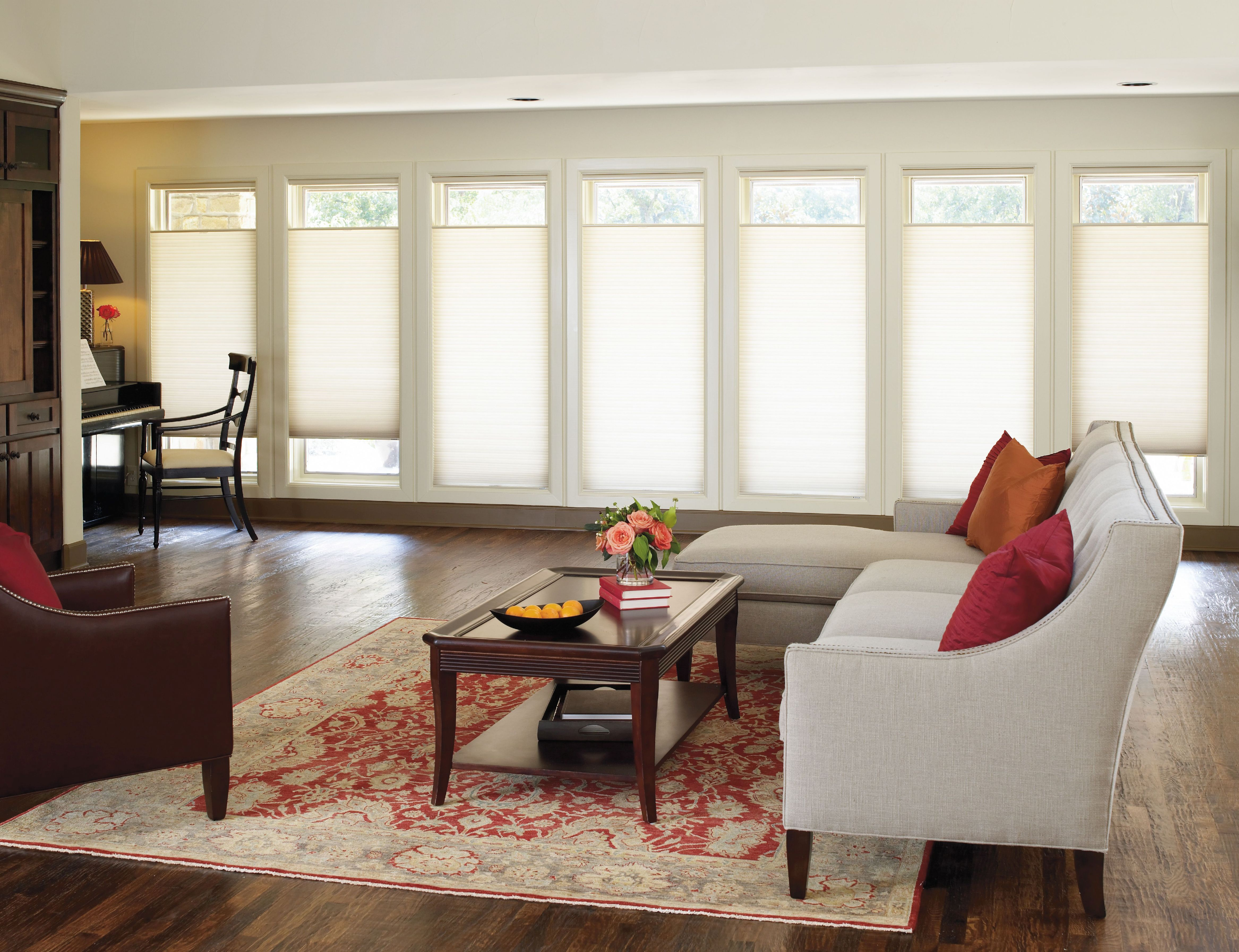 accordia light filtering cellular shade in cordless color daylight