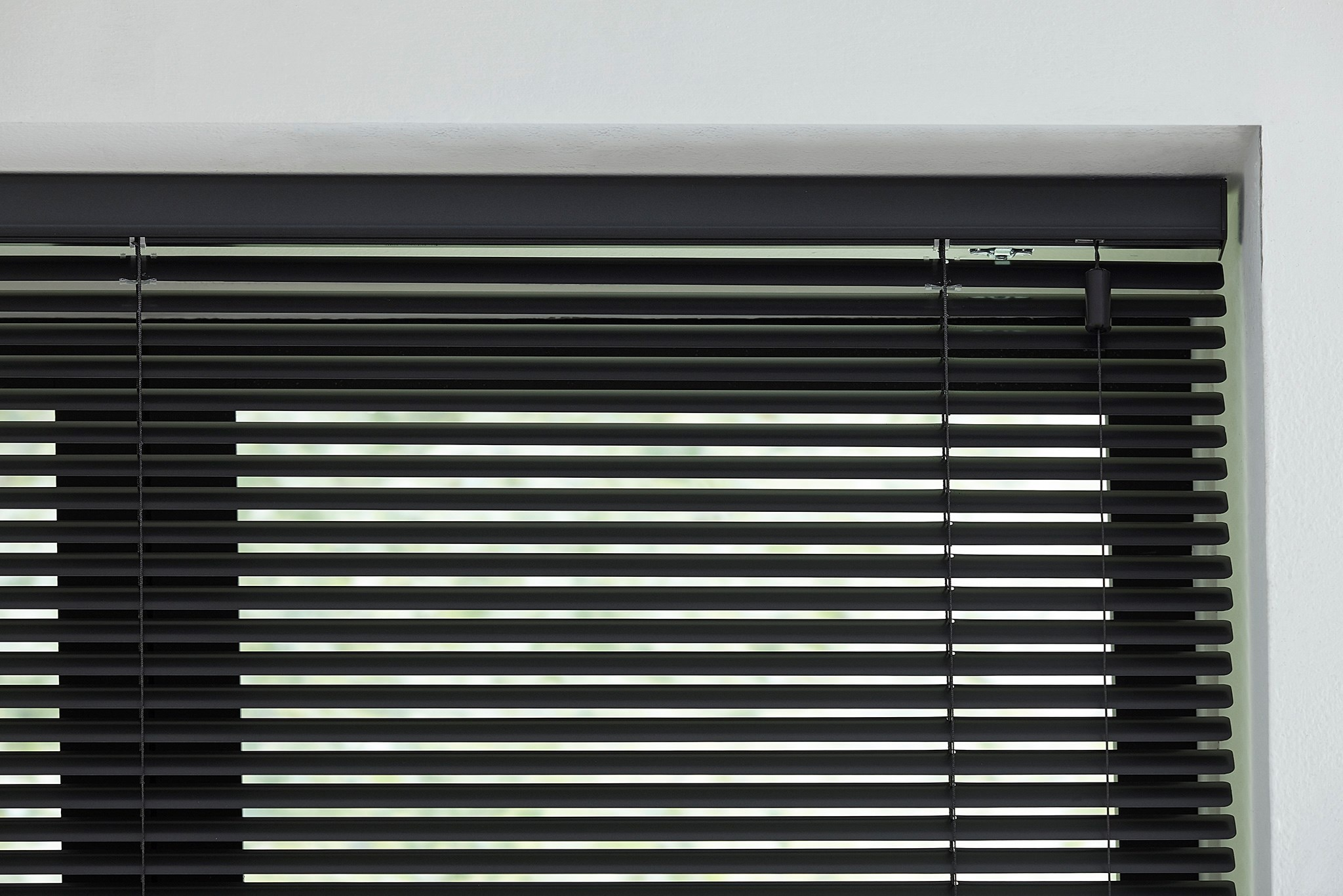 "1"" Signature Mini Blinds"