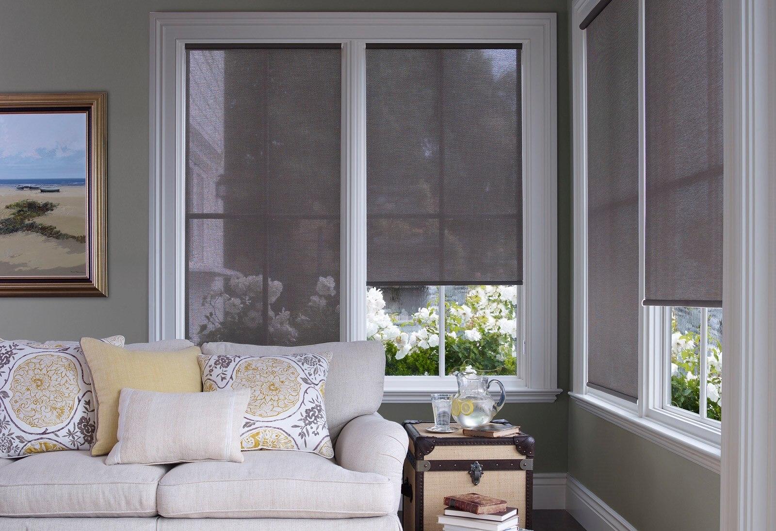Window Roller Shades