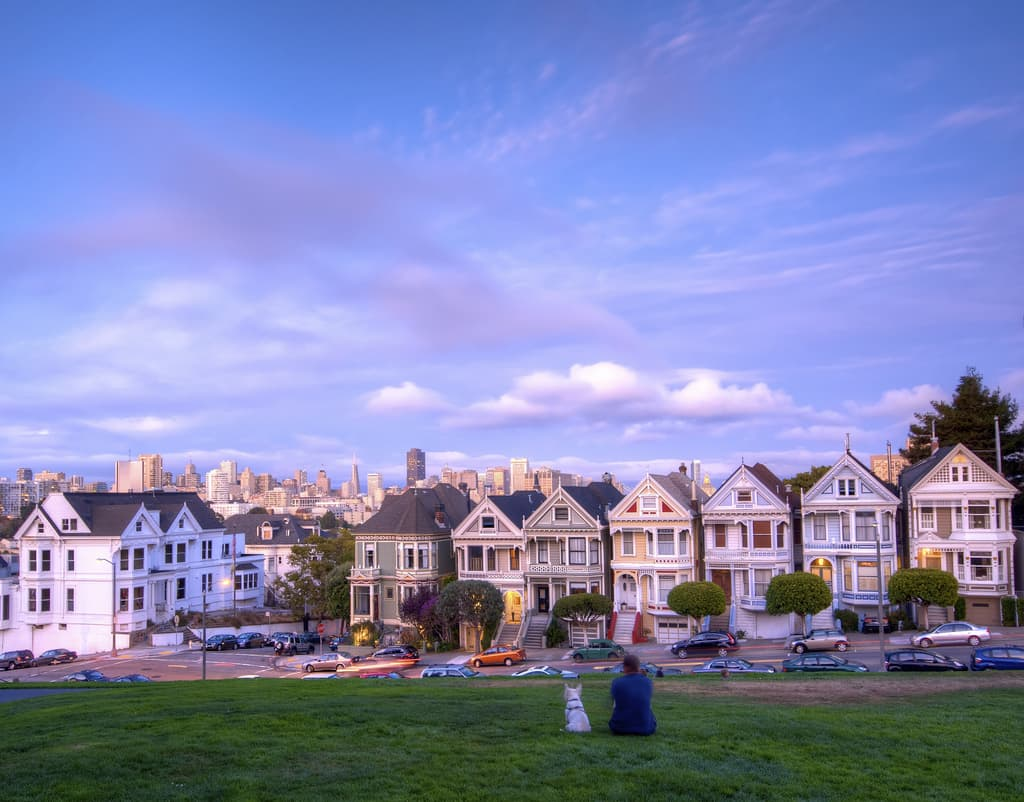 paintedlady1 A Window Into the Past: San Franciscos Painted Ladies
