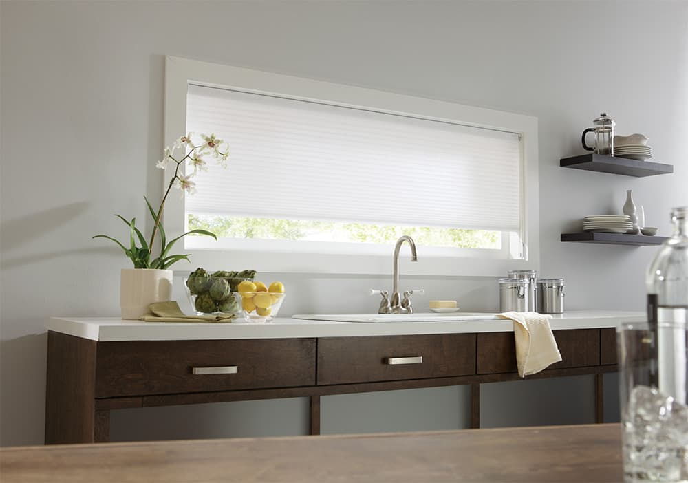 shades for wide window