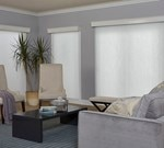 Blinds.com: Signature Light Filtering Vertical Cellular Shade