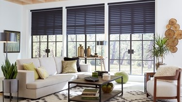 Blinds.com: Radiance Room Darkening Sheer Shade