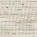 Color Sample - Natural Weave Bleached 53B